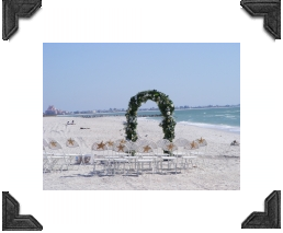 floral arch and chairs with starfish for a beach wedding in florida