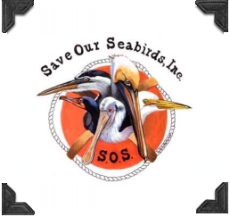 logo for save our seabirds, non-profit
