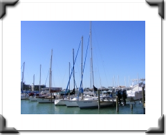 boats at a marina, high masted sailboats